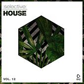 Selective: House, Vol. 12 by Various Artists