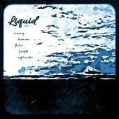 2017 by Liquid