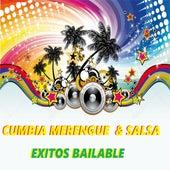 Cumbia Merengue & Salsa Exitos Bailable de Various Artists