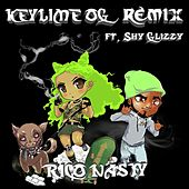 Key Lime OG (Remix) (feat. Shy Glizzy) by Rico Nasty