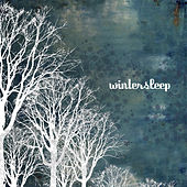 Wintersleep by Wintersleep