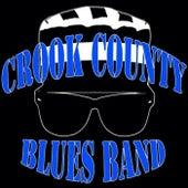 T-Bone Shuffle de Crook County Blues Band