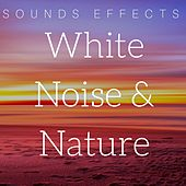 White Noise & Nature - Sounds Effects by Various Artists