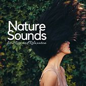 Nature Sounds for Sleep and Relaxation - Spa Music Therapy, Ambient Zen, Meditation Music Zone by Various Artists