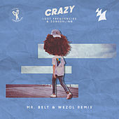 Crazy (Mr. Belt & Wezol Remix) by Lost Frequencies and Zonderling