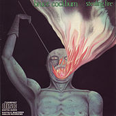Stealing Fire (Deluxe Edition) by Bruce Cockburn