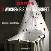 3 Wochen bis zur Wahrheit (Gekürzt) von Kate Pepper