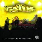 En Vivo Desde Bakerfield Ca by Los Gatos De Sinaloa