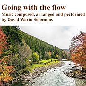Going with the Flow by David Warin Solomons