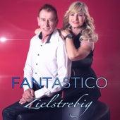 Zielstrebig by Fantastico