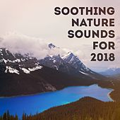 Soothing nature sounds for 2018 de Various Artists
