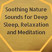 Soothing Nature Sounds for Deep Sleep, Relaxation and Meditation by Various Artists