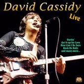 David Cassidy Live de David Cassidy