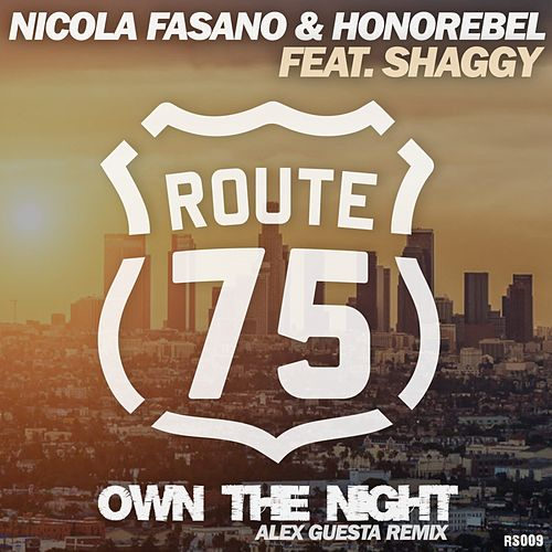 Own The Night (Alex Guesta Tribal Mix) by Nicola Fasano