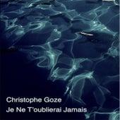 Je ne t'oublierai jamais by Christophe Goze