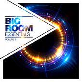 Big Room Essentials, Vol. 8 von Various Artists