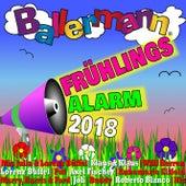 Ballermann Frühlingsalarm 2018 von Various Artists