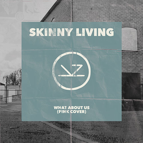 What About Us (P!nk Cover) by Skinny Living