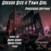 Processus Hoffman EP de Gregor Size