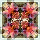Butterfly von Swingrowers