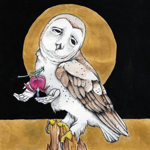 Farewell Transmissionb/wThe Dark Don't Hide It de Kevin Morby