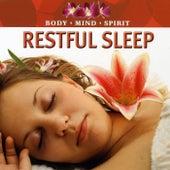 Restful Sleep by Various Artists