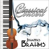 Johannes Brahms de Various Artists