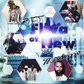 Fliva Of New, Vol. 1 by DJ Fdt