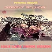 Ambient Sounds by Physical Dreams