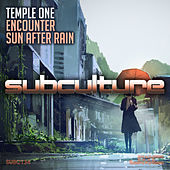 Encounter + Sun After Rain by Temple One