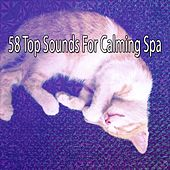 58 Top Sounds For Calming Spa von Best Relaxing SPA Music