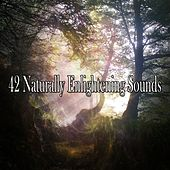 42 Naturally Enlightening Sounds de Massage Tribe