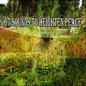 67 Sounds To Heighten Peace von Lullabies for Deep Meditation