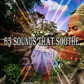 65 Sounds That Soothe von Massage Therapy Music