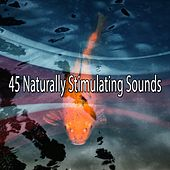 45 Naturally Stimulating Sounds by Classical Study Music (1)