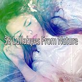58 Lullabyes From Nature by Bedtime Baby