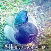 48 Homely Rest Sounds by Deep Sleep Music Academy