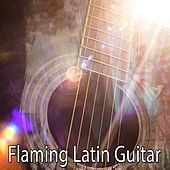 Flaming Latin Guitar by Gypsy Flamenco Masters