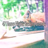 47 Heavy Nights Resting Sounds by Deep Sleep Relaxation