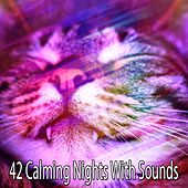 42 Calming Nights With Sounds by Bedtime Baby