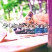 49 Calming Spa Sounds de Best Relaxing SPA Music