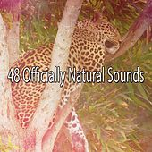 48 Officially Natural Sounds by Lullaby Land