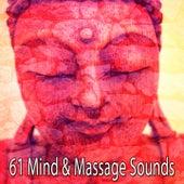 61 Mind & Massage Sounds von Massage Therapy Music