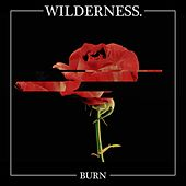 Burn by Wilderness