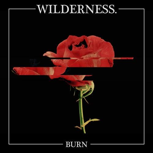 Burn by Wilderness