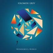 Wonderful World de Solomon Grey