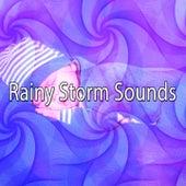 Rainy Storm Sounds de Thunderstorm Sleep