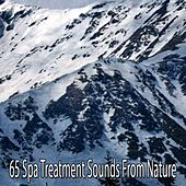 65 Spa Treatment Sounds From Nature by S.P.A