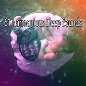 61 Harmonious Sleep Sounds de White Noise Babies