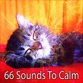 66 Sounds To Calm by White Noise For Baby Sleep